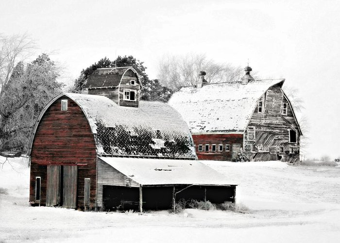 Christmas Greeting Card featuring the photograph South Dakota Farm by Julie Hamilton