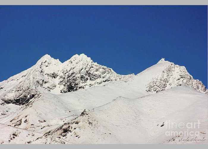 Layla Alexander Greeting Card featuring the photograph South Island White Peaks by Layla Alexander