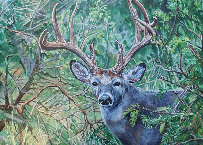 Deer Greeting Card featuring the painting South Texas Deer In Thick Brush by Diann Baggett