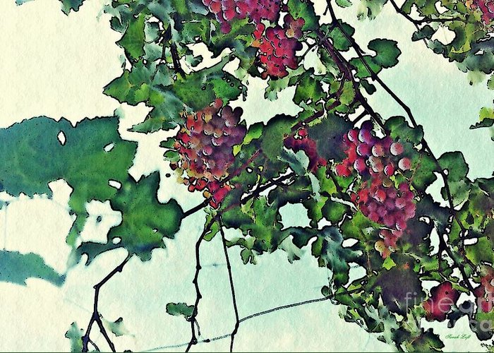 Grapes Greeting Card featuring the photograph Spanish Grapes by Sarah Loft