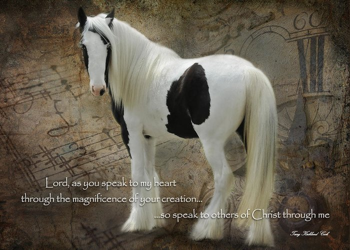 Equine Greeting Card featuring the photograph Speak To My Heart by Terry Kirkland Cook