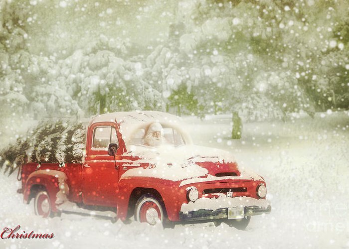 Christmas Greeting Card featuring the photograph Special Delivery by John Anderson