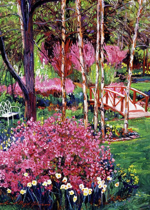 Gardens Greeting Card featuring the painting Spellbound Color Impressions by David Lloyd Glover