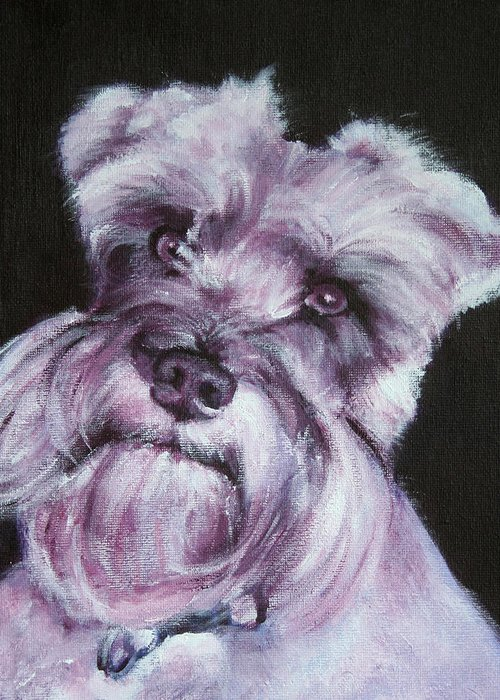 Schnauzer Greeting Card featuring the painting Spike by Fiona Jack