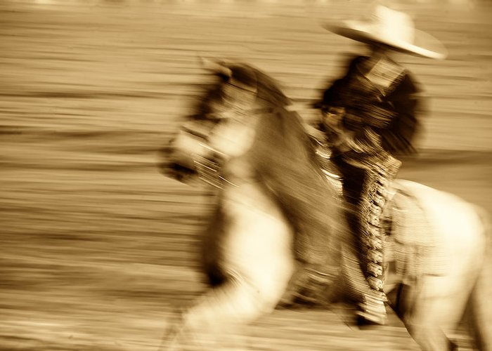 Equine; Horses; Charro Greeting Card featuring the photograph Spirit Of The Charro3 by Nick Sokoloff