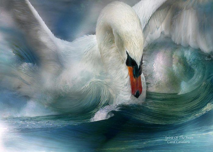 Swan Greeting Card featuring the mixed media Spirit Of The Swan by Carol Cavalaris