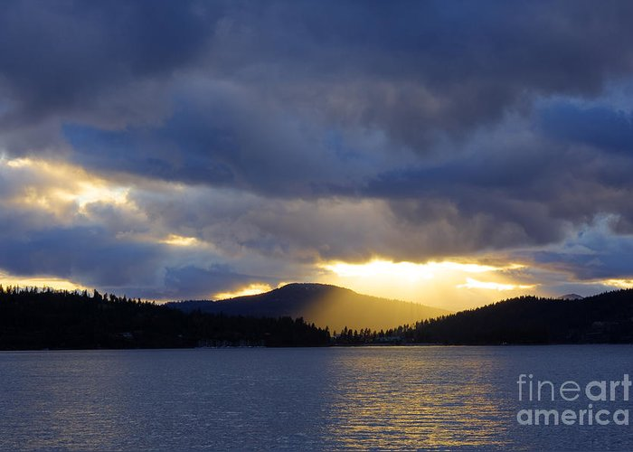 Sun Greeting Card featuring the photograph Spotlight by Idaho Scenic Images Linda Lantzy