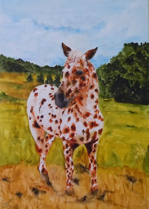 Horse Greeting Card featuring the painting Spotted in Hawaii by Jean Blackmer