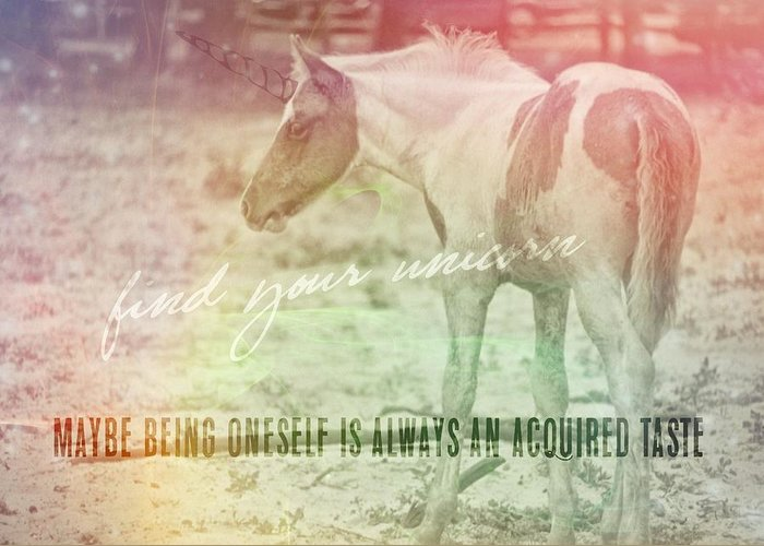 Pony Greeting Card featuring the photograph Spotted Pony Quote by JAMART Photography