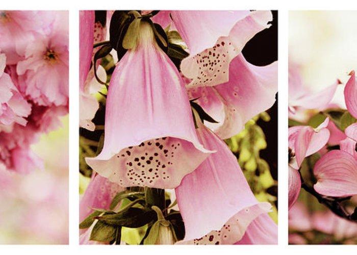 Foxglove Flowers Greeting Cards