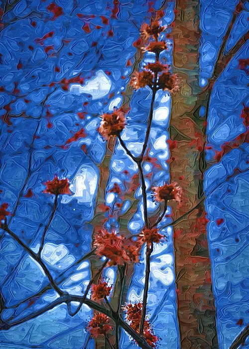 Spring Greeting Card featuring the photograph Spring Buds by Tom Reynen