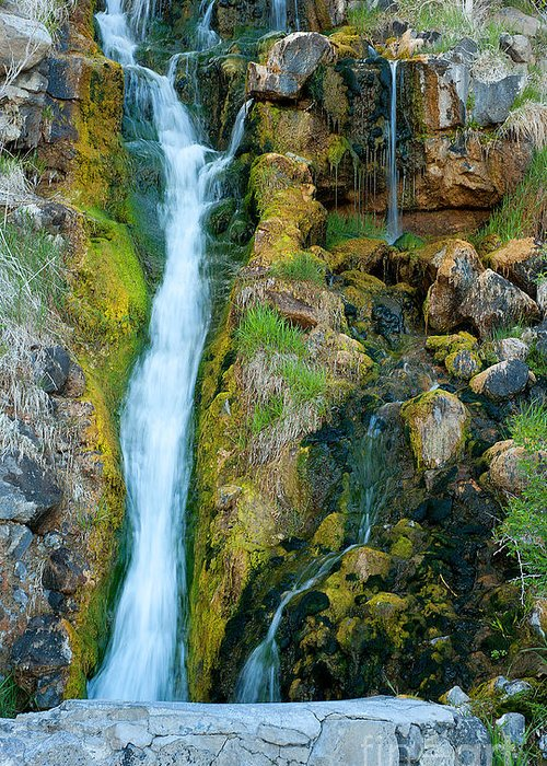 Water Greeting Card featuring the photograph Spring Creek by Dennis Hammer