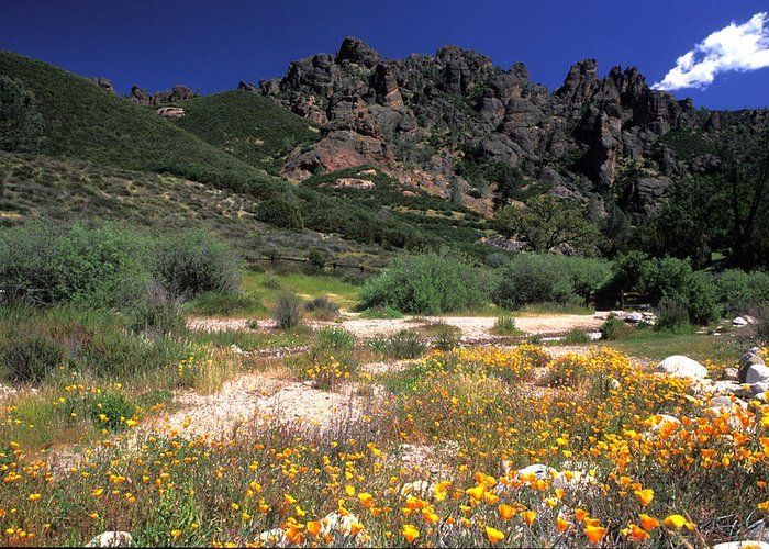 Mountain Landscapes Greeting Card featuring the photograph Spring In The Pinnacles by Kathy Yates