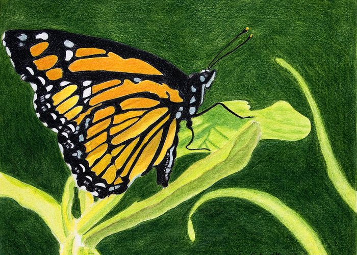 Animals Greeting Card featuring the painting Spring Monarch by Wade Clark