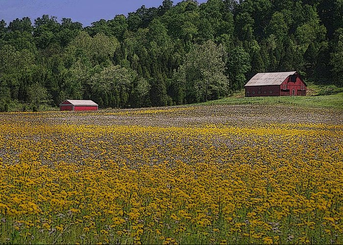 Barn Greeting Card featuring the photograph Spring Mustard And Barns by Rick DeCroes