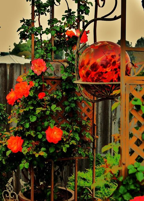 Rose Greeting Card featuring the photograph Spring Trellis by Helen Carson