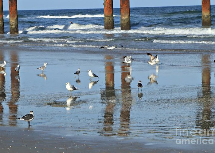 Marcia Lee Jones Greeting Card featuring the photograph St. Augustine Beach by Marcia Lee Jones