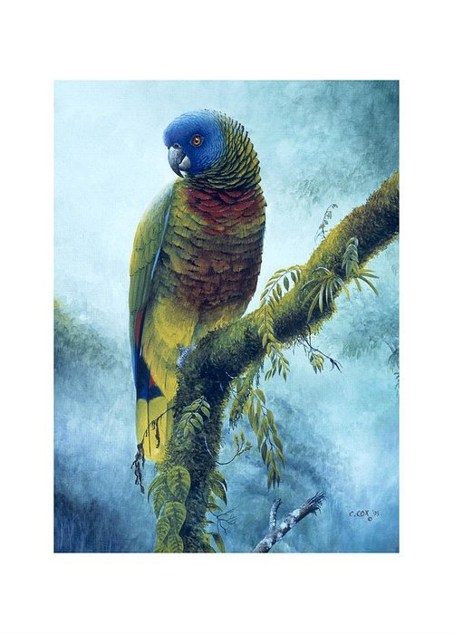 Chris Cox Greeting Card featuring the painting St. Lucia Parrot - Majestic by Christopher Cox