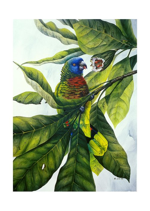 Chris Cox Greeting Card featuring the painting St. Lucia Parrot And Fruit by Christopher Cox