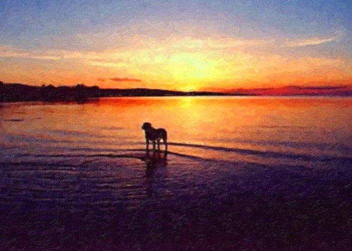 Staffordshire Bull Terrier Greeting Card featuring the painting Staffordshire Bull Terrier On Lake by Michael Tompsett