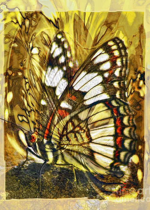 Butterfly Greeting Card featuring the digital art Stained Glass Butterfly by Chuck Brittenham