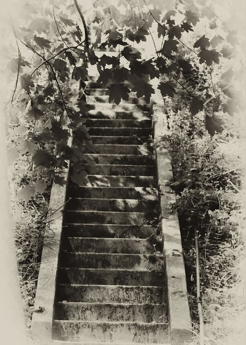 Philadelphia Greeting Card featuring the photograph Stairway To Heaven by Bill Cannon