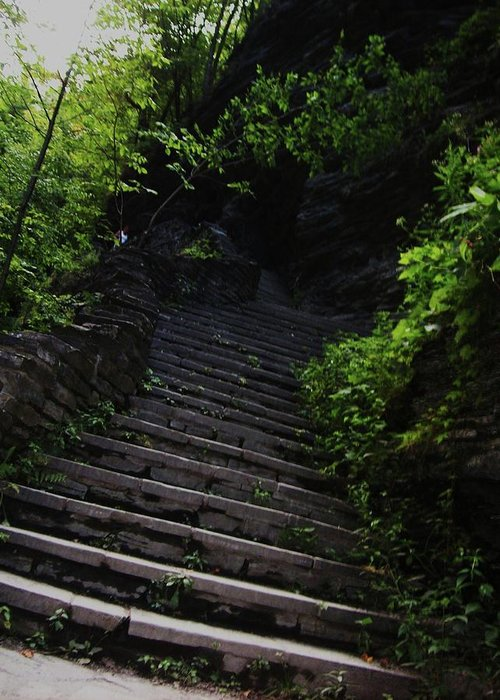 Watkins Glen Greeting Card featuring the photograph Stairway To Watkins 2 by InTheSane DotCom