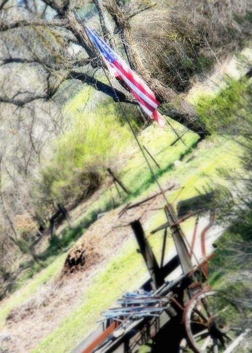 American Greeting Card featuring the photograph Stands Alone by Melissa KarVal
