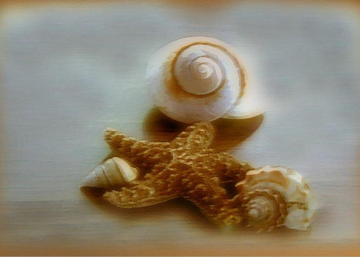 Beach Art Greeting Card featuring the photograph Star And Shells by Linda Sannuti
