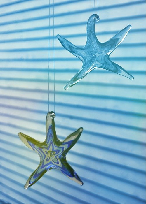Star Greeting Card featuring the photograph Star Bright by JAMART Photography