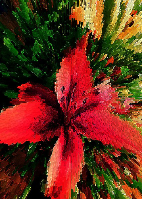 Flower Greeting Card featuring the photograph Star Burst by Doc Howell