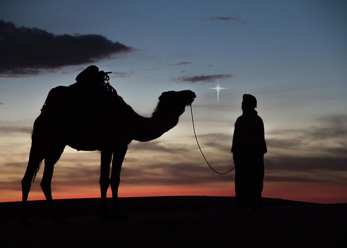 Africa Greeting Card featuring the photograph Star Of Bethlehem by Emily M Wilson