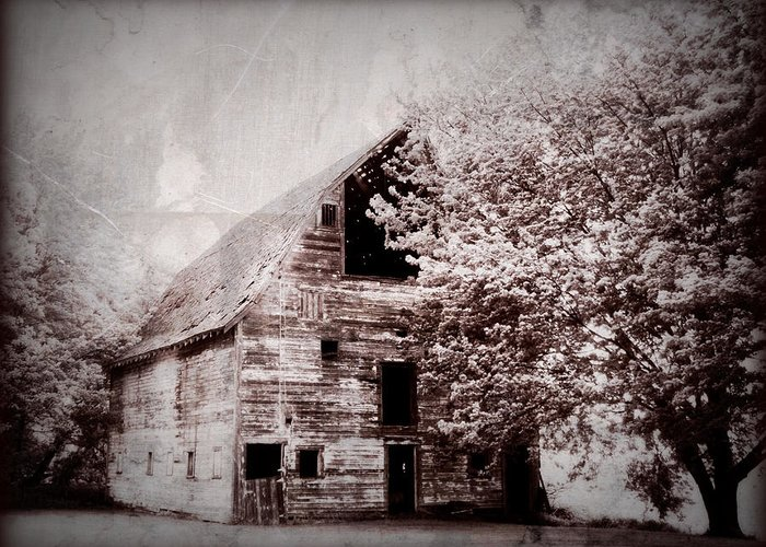 Barn Greeting Card featuring the photograph Still Here by Julie Hamilton