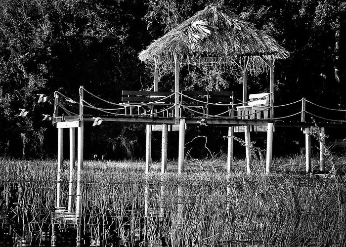 Dock Greeting Card featuring the photograph Stilt Dock by Jessica Levant