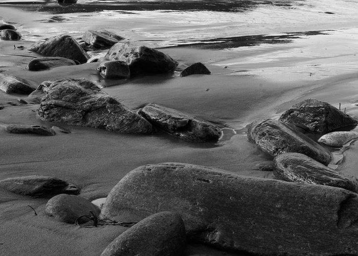 Sea Greeting Card featuring the photograph Stone Shore by Filipe N Marques