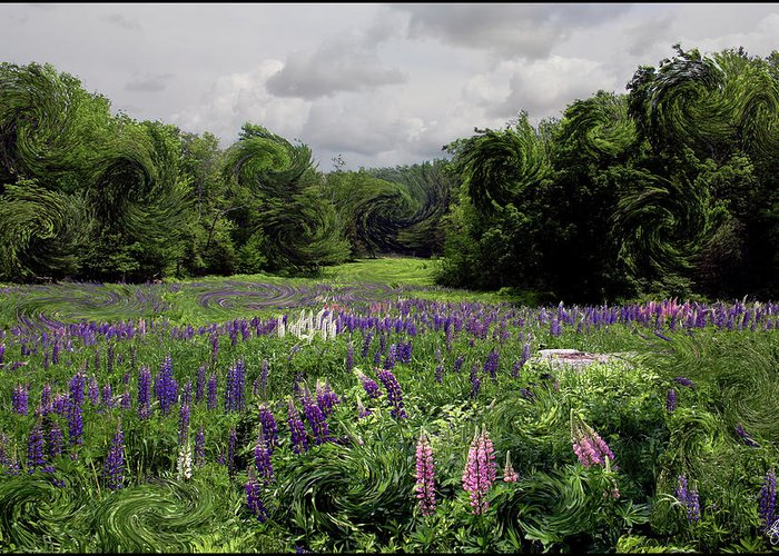Lupine Greeting Card featuring the photograph Storm In The Lupine by Wayne King