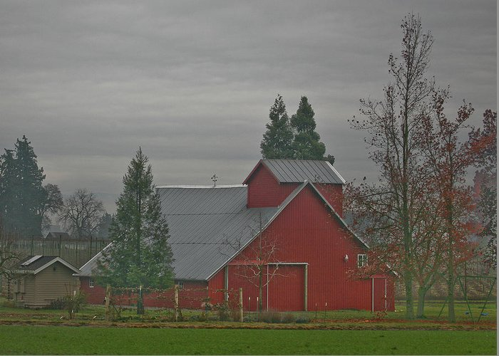 Barn Greeting Card featuring the photograph Stormy Night by Liz Santie