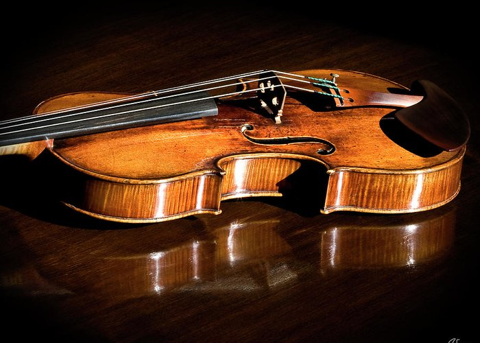 Strad Greeting Card featuring the photograph Stradivarius In Sunlight by Endre Balogh