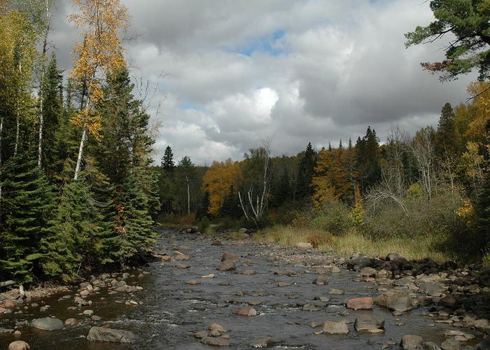 Nature Greeting Card featuring the photograph Stream At Tettegouche State Park by Kathy Schumann
