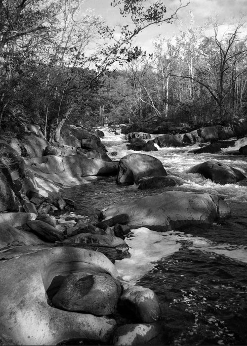 Stream Black White Greeting Card featuring the photograph Stream by Kevin Mitts