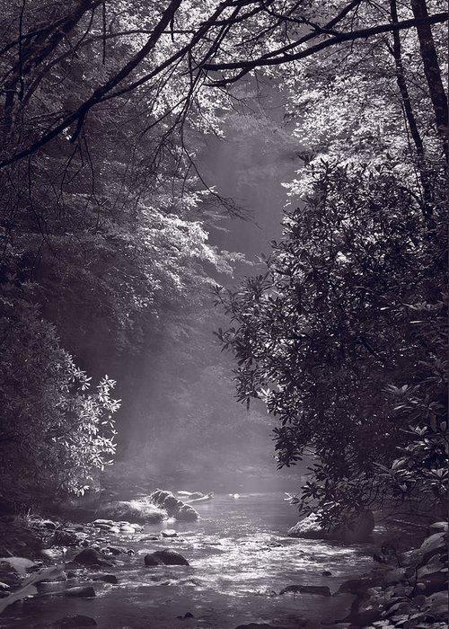 Blueridge Greeting Card featuring the photograph Stream Light B W by Steve Gadomski