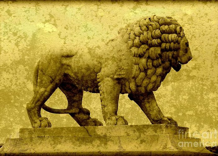 Lion Greeting Card featuring the photograph Strength by Carol Groenen