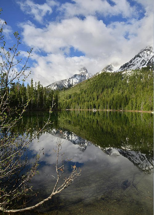 Grand Teton National Park Greeting Card featuring the photograph String Lake Reflection by Ray Mathis