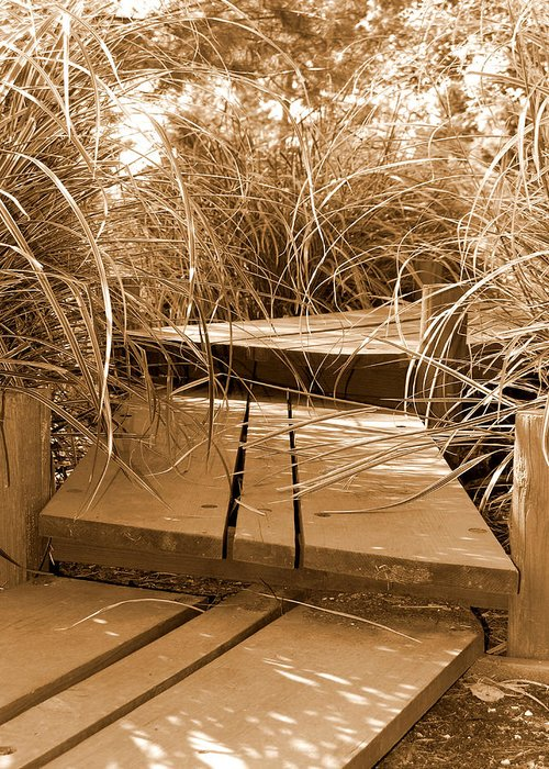 Sepia Greeting Card featuring the photograph Stroll Garden Walkway by Audrey Venute