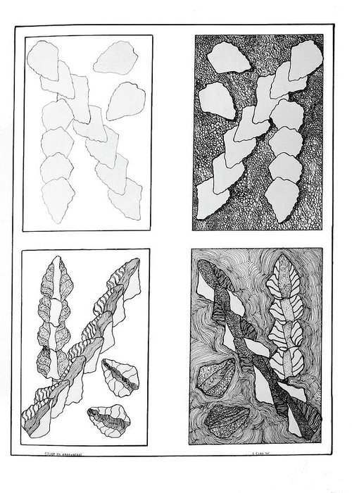 Pen & Ink Greeting Card featuring the drawing Study In Arrowheads by Susan Clay