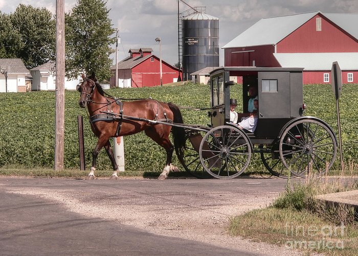 Nappanee Indiana Greeting Card featuring the photograph Such Grace - Such Serenity by David Bearden