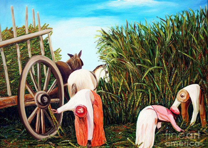 Cuban Art Greeting Card featuring the painting Sugarcane Worker 1 by Jose Manuel Abraham