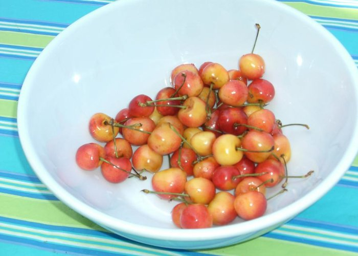 Cherries Greeting Card featuring the photograph Summer Cherries by Nancy Ferrier