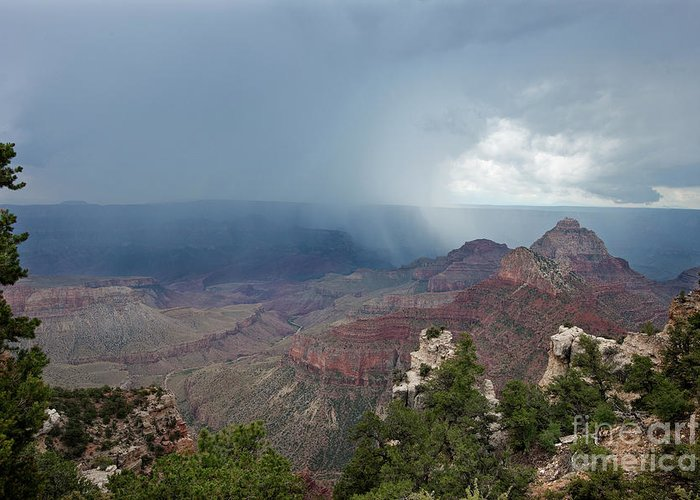 Dave Welling Greeting Card featuring the photograph Summer Storm North Rim Grand Canyon National Park Arizona by Dave Welling