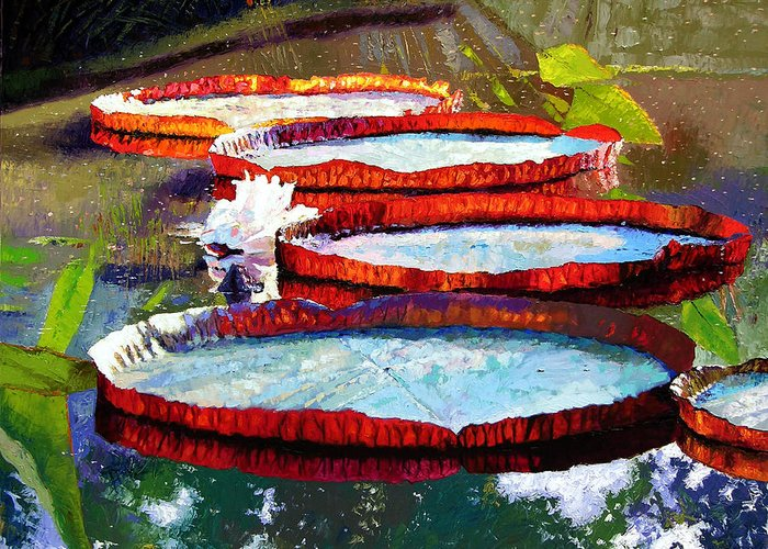 Water Lilies Greeting Card featuring the painting Summer Sunlight On Lily Pads by John Lautermilch